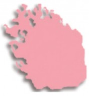 Компактные румяна Cinecitta Compact blush on 01: фото